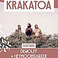 Infoconcert : dewolff et heymoonshaker seront au krakatoa de mérignac vendredi 14 octobre !!