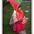 PH2012_10_12-008_lunette_cape_impermeable_poncho_rouge_pois_blanc_tissue_enduit_elmer_pixel_mire_multicolore_carreaux