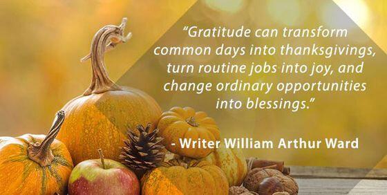 2017 1130 Gratitude