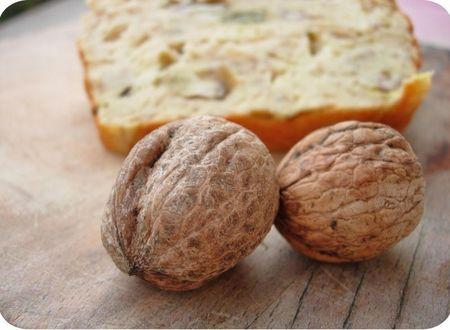 cake salé cèpes noix (scrap3)