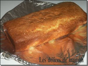 Copie_de_gateau_vanille__3_