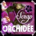 Concours scrap orchidée