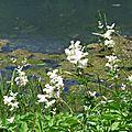 1-Lac de Genos 140617