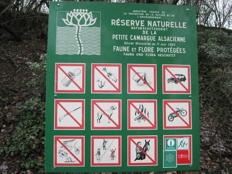 Petite Camargue 031