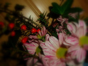 Bouquet_de_No_l_002