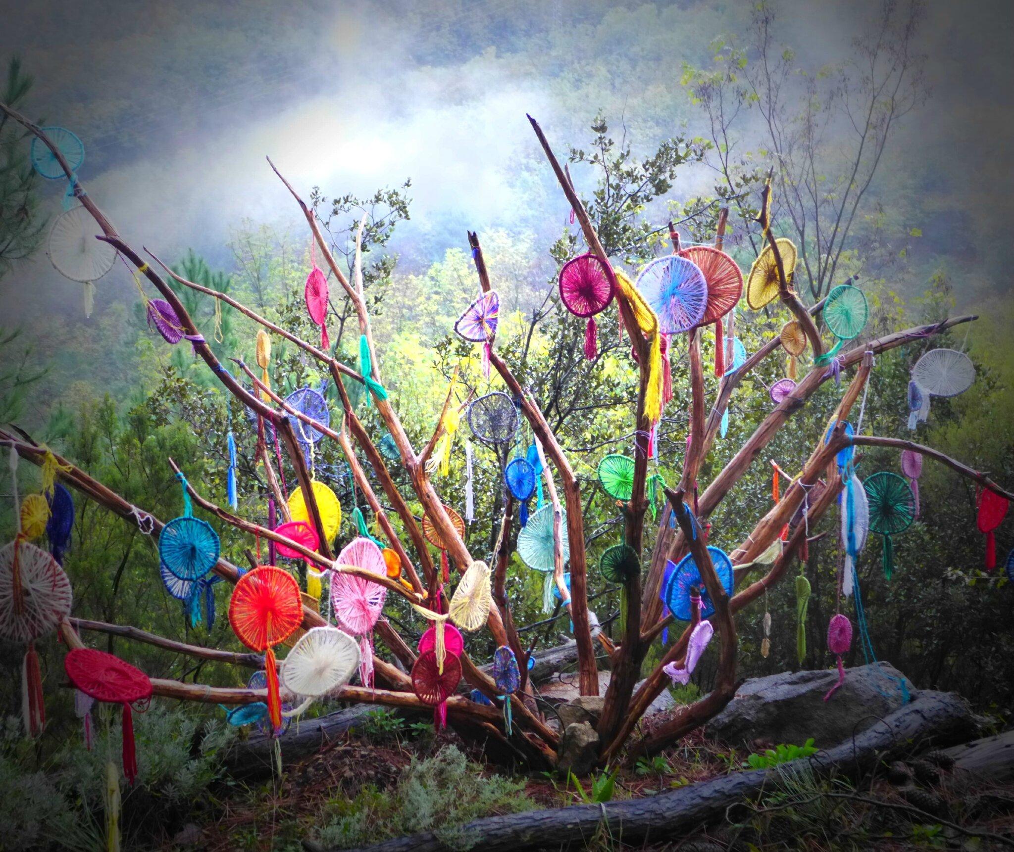 soleilades en bouquet de branches de chataigner polies yurtao