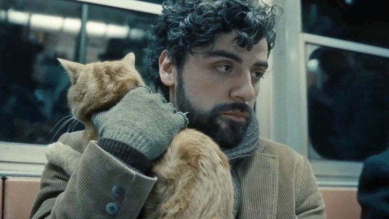 Inside Llewyn Davis The Cat