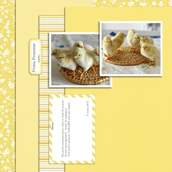 page _sahlinstudio_3mar15template_kit dde morning