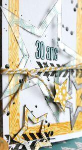 cartes choupyne et clochette en lylibee 003