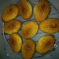 Madeleines made in lilou