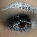 Smoky glossy et sourcils blanchis