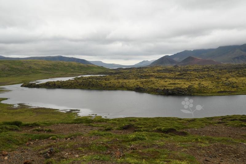 Islande, paysage région Stykkishólmur_4