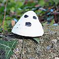 Boo ! le gentil fantôme lush