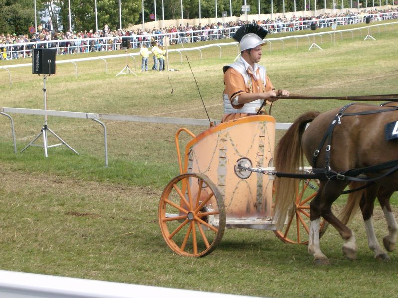 Marché concours de Saignelégier 2010