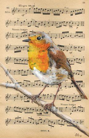 oiseaux_musique___0001