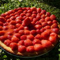 Tarte amandine aux fraises