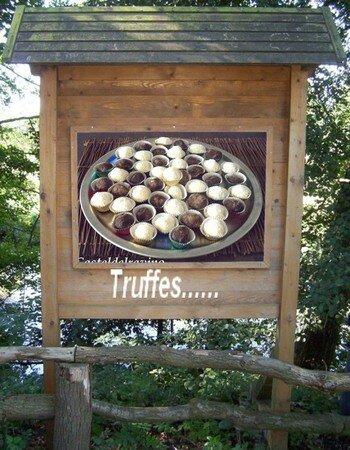 billboard2229901TRUFFES_2