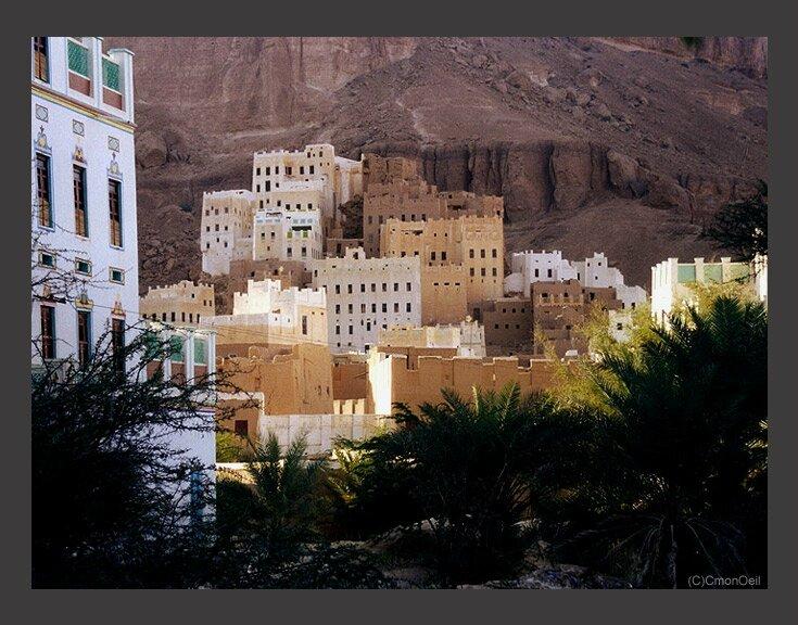 yemen35