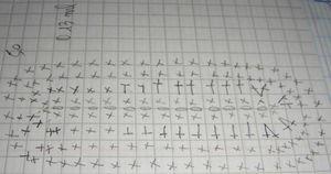 graph_semelle