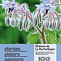 Fête des plantes dans le 95