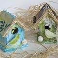 Oiseaux et cocos