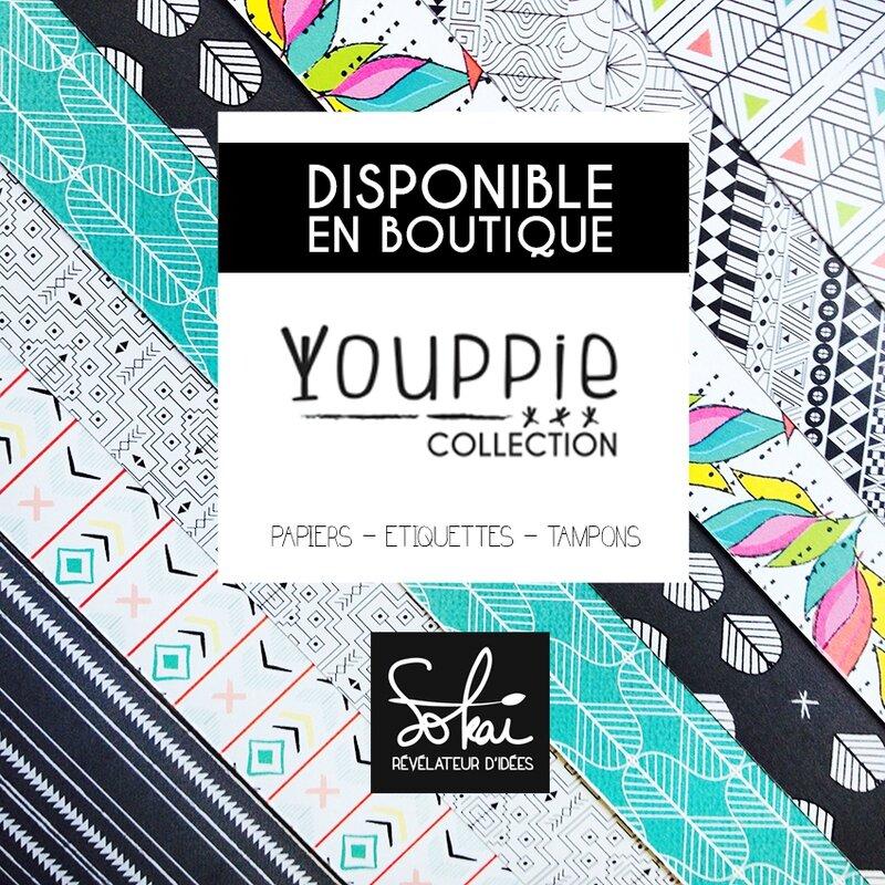 Youppie-Nouveaux-Papiers-Sokai