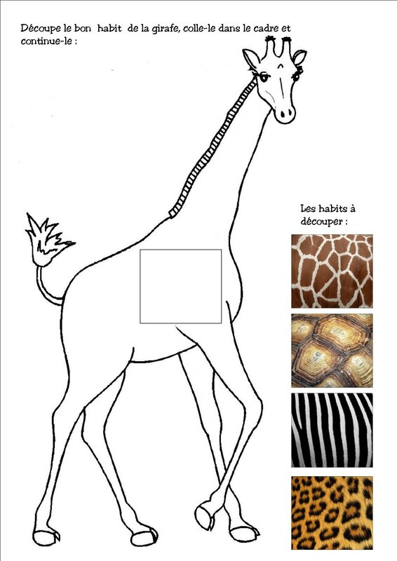 habit girafe
