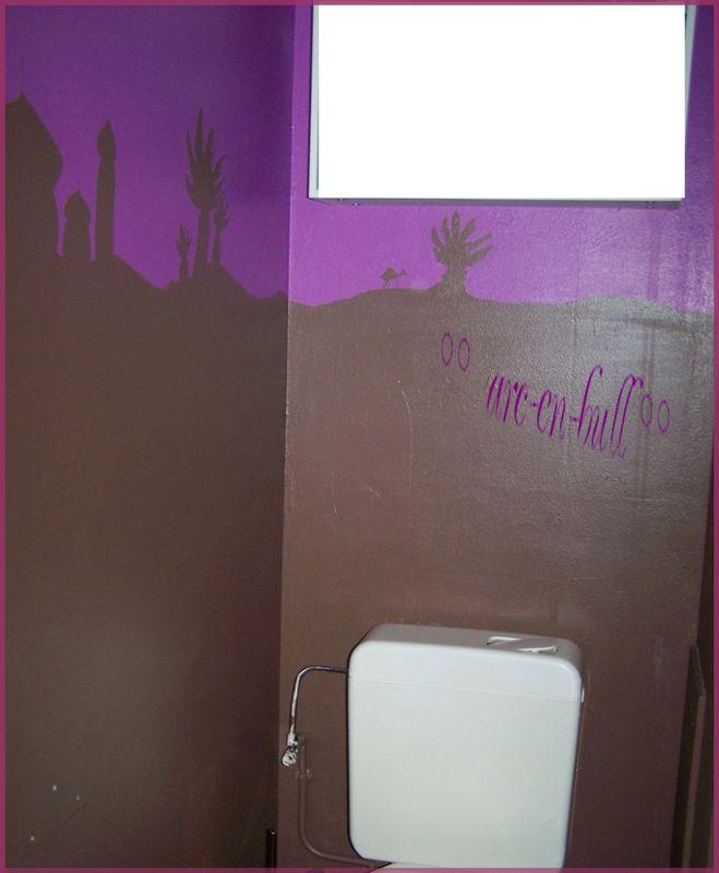 Peinture murale toilettes et couloir arc en bull for Peindre les toilettes
