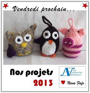 projets2013