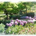 jardin10
