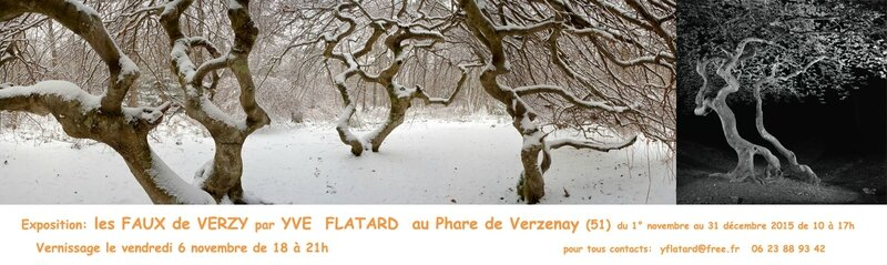 expo-FAUXdeVERZY-YVE-FLATARD