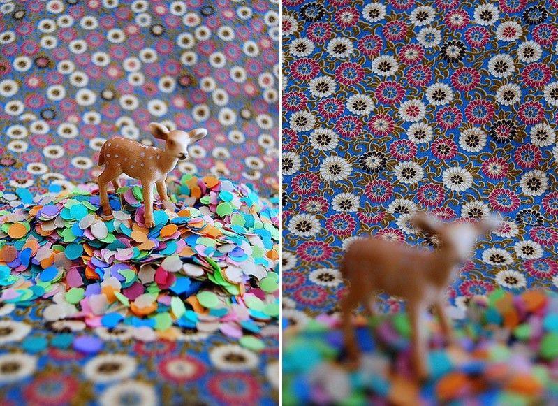 02_coton_japonais_ptes_fleurs_bleu