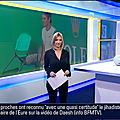 julieguillaume02.2014_11_17_premiereeditionBFMTV