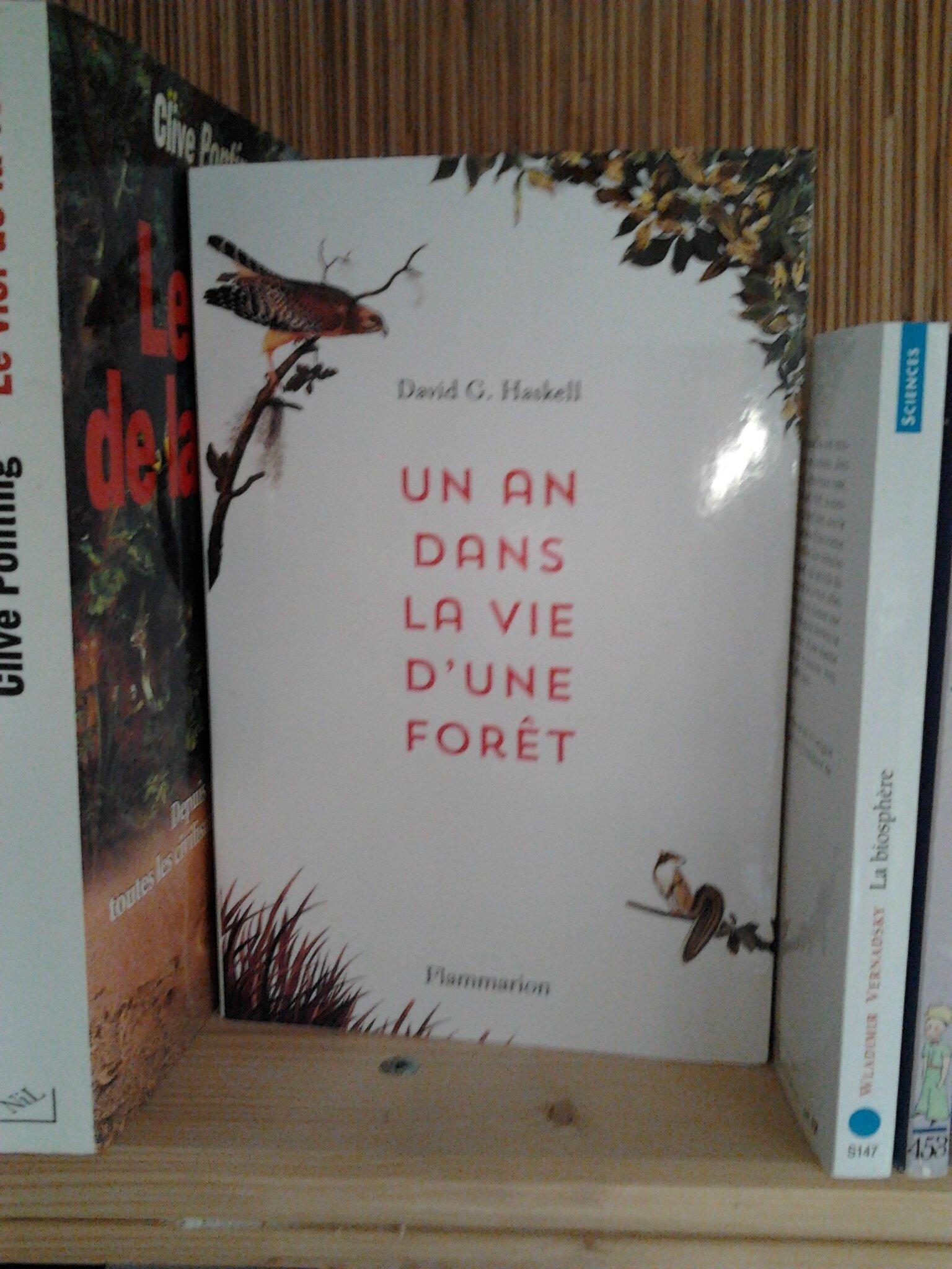 Un an dans la vie d'une forêt.