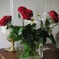 mon fleuriste m'aime, cadeau!