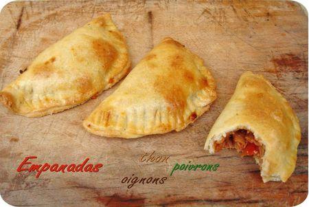 empanadas (scrap3)