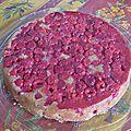 Je veux voir la vie en rose...gâteau aux framboises.