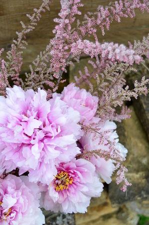 Jardin_printemps_056