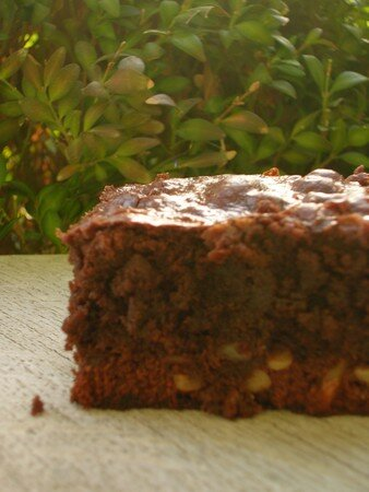 brownies_noix_de_p_can