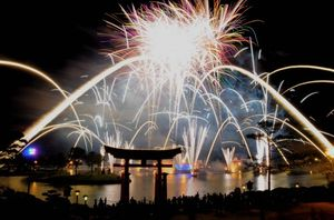 Epcot_Fireworks_15_500x330
