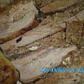 Epaule de veau farcie à la provençale