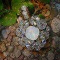 Perce neige opale