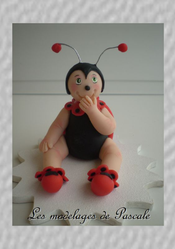 coccinnelle2