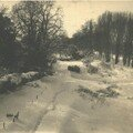 L'hiver 1956