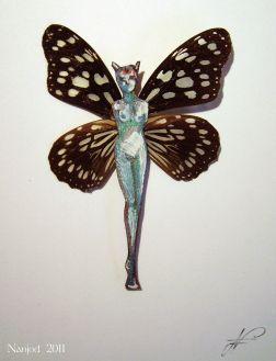 papillon 05-DanaisPetiverana-