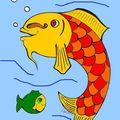 Les poissons dansent...