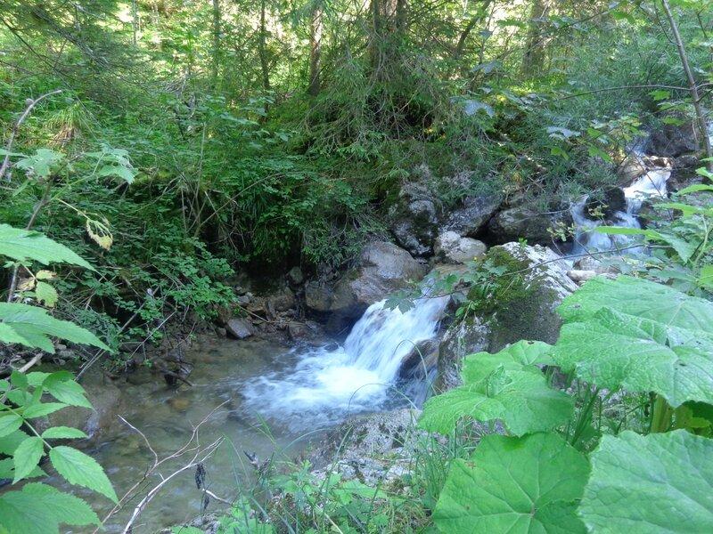en longeant la rivière