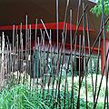 Le début des jardins du Quai Branly