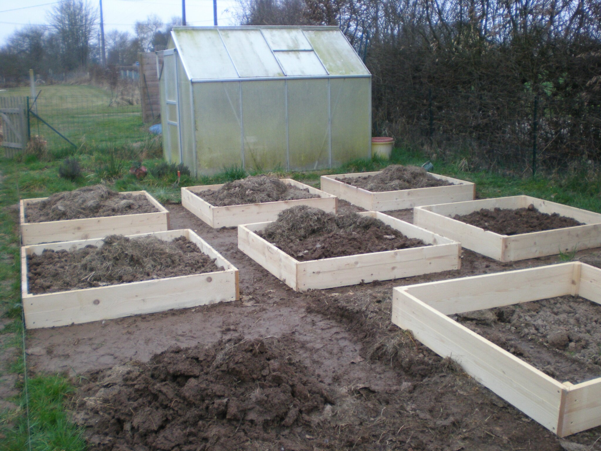 creation du potager en carres 3eme partie boutures de