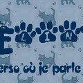 Bannière élina_